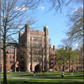 Yale University - College