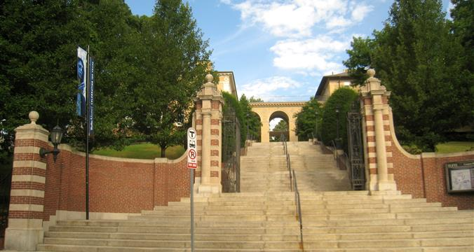 Tufts University - College