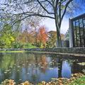 Brandeis University - College