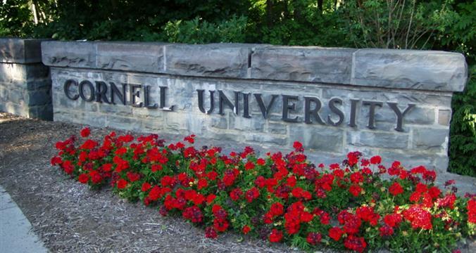 Cornell University - BS/BA