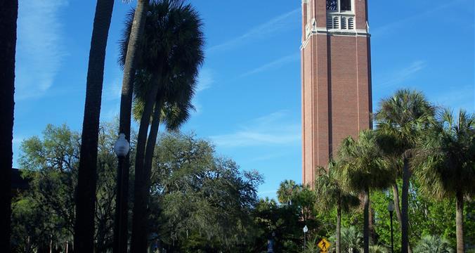 University of Florida - College