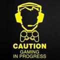 TheGamerofDanger avatar
