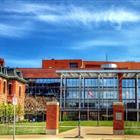 Boston University - Grad