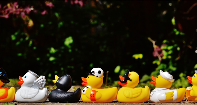 "Letters of Recommendation: ""Getting Your Ducks in a Row"""