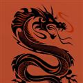 shash678 avatar